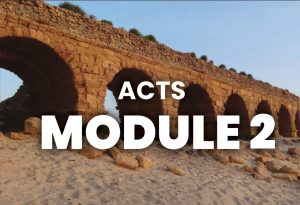 Module 2 - Acts