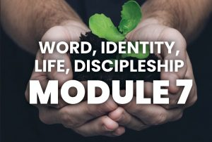 Module 7 - word, identity, live, discipleship